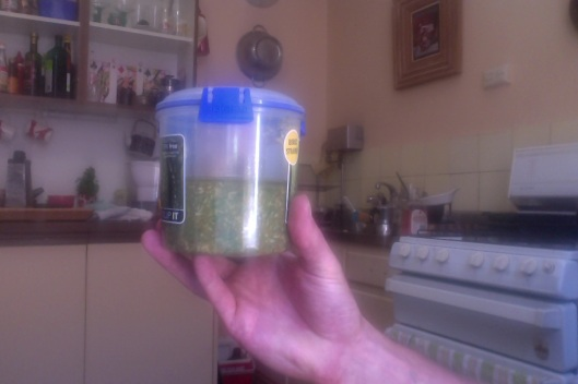 Hey pesto and there you have it! Half a tub of instant flavour and garlicky goodness to use however you see fit.